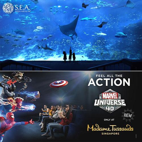 S.E.A Aquarium + Madame Tussauds [Adult]
